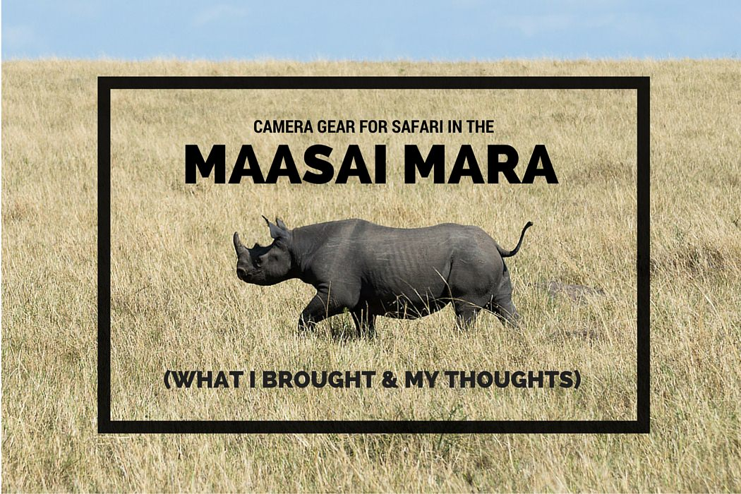 CAMERA GEAR FOR SAFARI in the Maasai Mara - Featured Image, GreatDistances / Matt Wicks