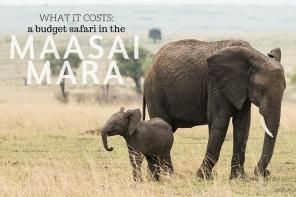 budget safari