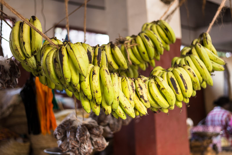 Bananas for sale in Lamu Town's small market. GreatDistances / Matt Wicks