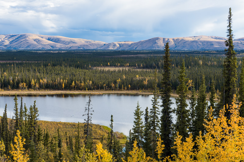 Autumn colors and mountains in eastern Alaska, on the Alaska-Canada Highway. East of Tok, Alaska. GreatDistances / Matt Wicks - Two Weeks in Alaska: Selected Photos