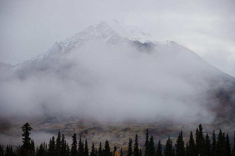 Eerie fog obscures the mountains in Denali State Park. Alaska. GreatDistances / Matt Wicks - Two Weeks in Alaska: Selected Photos