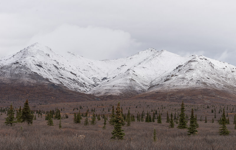 Snowy mountains in September in Denali National Park, near Savage River ranger station. GreatDistances / Matt Wicks - Two Weeks in Alaska: Selected Photos