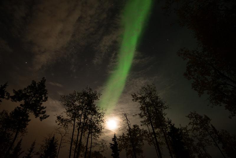 Green aurora borealis activity and moon, as viewed from Fairbanks, Alaska. GreatDistances / Matt Wicks - Two Weeks in Alaska: Selected Photos